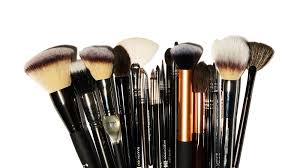 anese brush starter kit face brushes review shameless fripperies