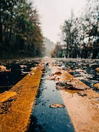Rain 4k Wallpaper iPhone Free Download 2021