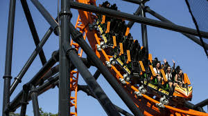remember the guy who threw up on busch gardens sheikra he s back on tigris