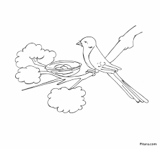 Small Picture Adult bird nest coloring page Nest Coloring Page Az Pages