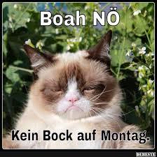 Kein Bock Auf Montag Lustige Bilder Sprüche Witze Echt Lustig