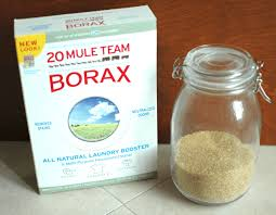 borax for ant control. Exellent For Borax And Sugar To Kill Ants On For Ant Control E