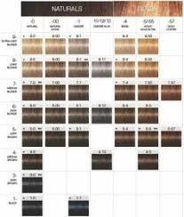 Igora Toner Colour Chart 640 Best Schwarzkopf Images In 2019 Schwarzkopf