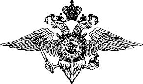 Реферат Убийство совершённое в состоянии аффекта статья УК  Орловский юридический институт МВД РФ