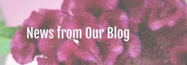 country garden florist. country garden florist clifton forge blog