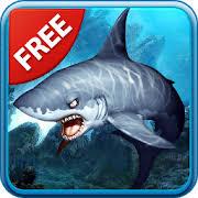 shark wallpaper 3d. Wonderful Shark 3D Sharks Live Wallpaper Lite Throughout Shark 3d D