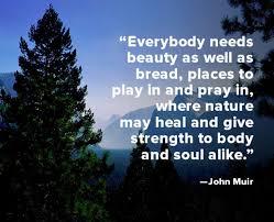Quote of the Week: John Muir - Biography.com via Relatably.com