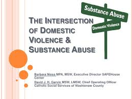 domestic abuse essay domestic abuse essays