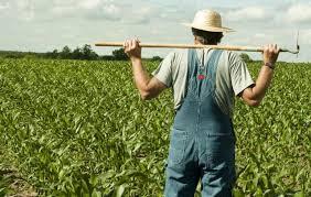 Αποτέλεσμα εικόνας για Πώς ρυθμίζεται σήμερα το ακατάσχετο στον αγροτικό τομέα.