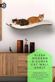 modern cat furniture shelves for your