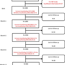 Pramukh Swami Birth Chart Flow Chart Of Participants Download Scientific Diagram