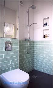 Modern bathroom shower design Floor To Ceiling The Wet Room Shower Modern Bathroom By Blue Cottini New York Spaces Magazine 50 Elegant Modern Bathroom Shower Designs New York Spaces Magazine