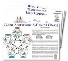 Canine Acupuncture Meridian Chart Canine 5 Element Chart Set 4 Charts