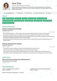 Professional Resume Templates 24 Professional Resume Templates As They Should Be 24 Resumes 19