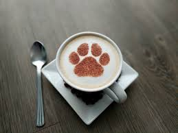 How To Make Designs In Cappuccino Paw Print Cappuccino Stencil Animal Print Coffee