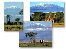 Реферат на тему африка география класс <> найдено в каталоге Реферат на тему африка география 7 класс