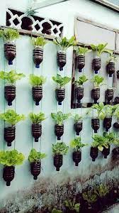 diy smart mini garden ideas for indoor
