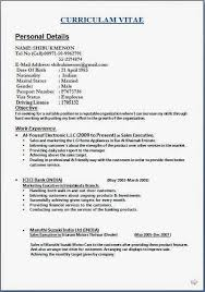 resume examples activities and interests uncategorized examples of interests on a resume