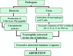 induction of by infections
