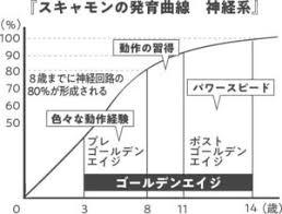 スキャモンの発育曲線 | 株式会社LILIRO