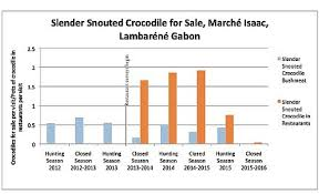 Hunting Season Chart Removing Rare Crocs From The Menu Conservation Leadership