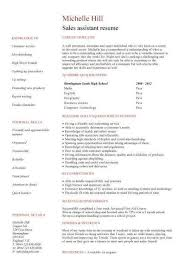 Resume Examples With No Work Experience Unique No Experience Resume Mesmerizing Resume Ideas For No Work Experience