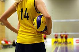 volleyball 1080p 2k 4k 5k hd