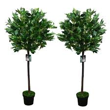 Decorative Indoor Trees Pair Of 2 4ft Artificial Bay Leaf Tree Indoor Or Outdoor