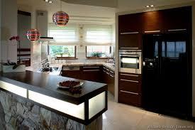 02 more pictures modern dark wood kitchen