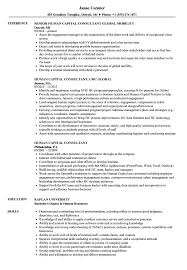 Human Capital Consultant Resume Samples Velvet Jobs