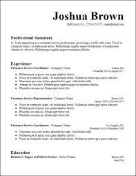 Good Summary For Resume