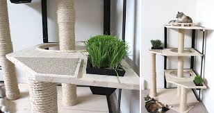 this was the first time we had incorporated live plants with our cat furniture it was also our first real attempt at coming up with a cat tree design that
