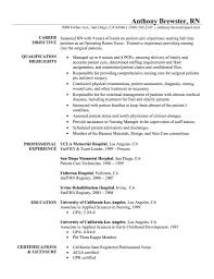 Resume Templates For Nursing Jobs Perfect Resume Objective Examples