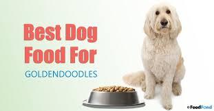 20 Best Dog Foods For Goldendoodles In 2019 Feedfond