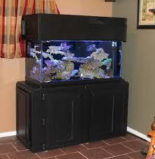 Best Aquarium Stand Design 25 Diy Aquarium Stands For Various Sizes Of Fish Tanks