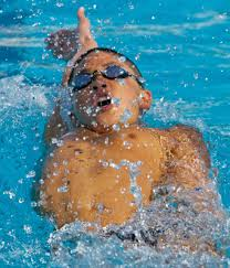 michael phelps teen essay about professional sports and swimming  michael phelps