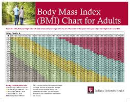 Bmi Chart In Kg Pdf 36 Free Bmi Chart Templates For Women Men Or Kids