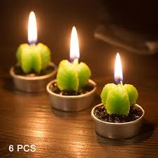 Small Picture Popular Cactus Candles Buy Cheap Cactus Candles lots from China