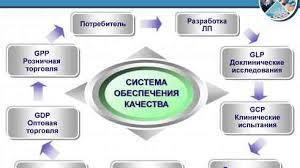 Система качества социальных услуг реферат система качества социальных услуг реферат курсовая работа 72 1 k добавлена 04 03 2014 Анализ качества Принципы обеспечения
