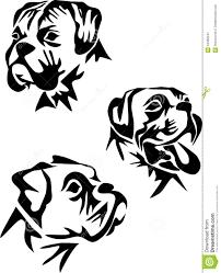 Boxer stock illustrations 9 847 boxer stock illustrations vectors clipart dreamstime