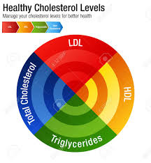 An Image Of A Total Blood Cholesterol Hdl Ldl Triglycerides Chart