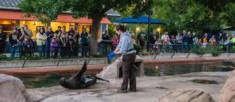 jobs internships denver zoo jobs internships