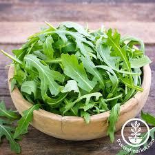 garden seed. Arugula - Organic Herb Seed Garden L