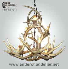 full size of real deer antler chandelier zoom real antler chandelier real antler chandelier scotland