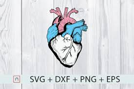 Discover 600+ svg animation designs on dribbble. 1 Trans Pride Lgbtq Designs Graphics
