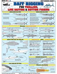 Bait Size Chart Pin By Paul Vistalli On Fishing Rigs Bottom Fishing Bass