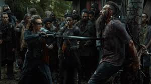 Image result for the 100 grounders