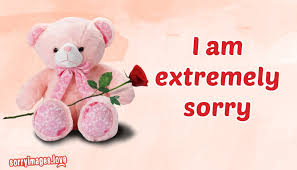 sorry images for teddy bear