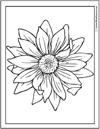 Small Picture Sunflower Coloring Page 14 PDF Printables
