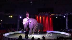 abuse of elephants at garden bros circus